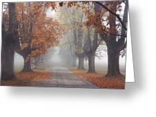 Foggy Driveway Greeting Card by Wendell Thompson