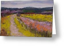 Follow The Daisies Greeting Card by David Patterson