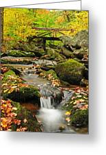 Foot Bridge- Macedonia Brook State Park Greeting Card by Thomas Schoeller