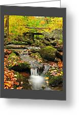 Foot Bridge- Macedonia Brook State Park Greeting Card by Thomas Schoeller