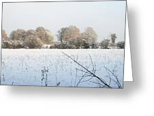 Footprints In The Snow Greeting Card by Barry Goble