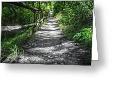 Forest Path Greeting Card by Dobromir Dobrinov