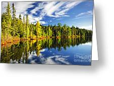 Forest Reflecting In Lake Greeting Card by Elena Elisseeva