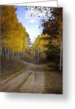 Forest Road In Autumn Greeting Card by Ellen Heaverlo