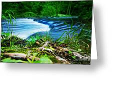 Forest Stream Running Fast Greeting Card by Michal Bednarek