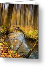 Forever Autumn Greeting Card by Ian Hufton