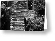 Forgotten Log Cabin Greeting Card by Cindy Singleton
