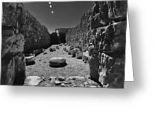 Fortress Of Masada Israel 2 Greeting Card by Mark Fuller