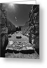 Fortress Of Masada Israel 2 Greeting Card by Mark Fuller