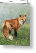 Fox  Greeting Card by David Stribbling