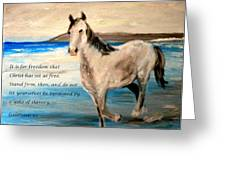 Freedom Greeting Card by Amanda Dinan