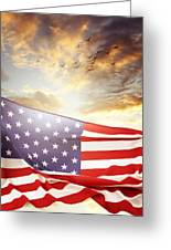 Freedom Greeting Card by Les Cunliffe