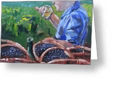French Vineyard Worker Greeting Card by Kendal Greer