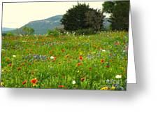 FRESH FLOWERS Greeting Card by Joe Jake Pratt