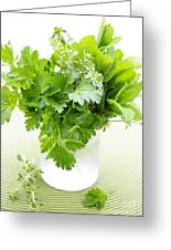 Fresh Herbs In A Glass Greeting Card by Elena Elisseeva