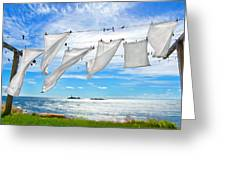 Fresh Laundry Greeting Card by Donna Doherty