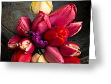 Fresh Spring Tulips Still Life Greeting Card by Edward Fielding