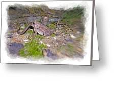 Frog Eating A Worm Greeting Card by Susan Leggett