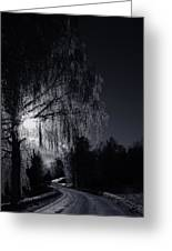 Frost Night Greeting Card by Erik Brede