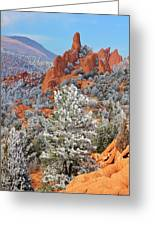 Frosted Wonderland 1 Greeting Card by Diane Alexander