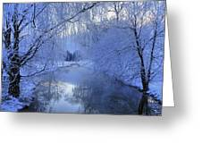 Frosty Morn Greeting Card by Dan Myers