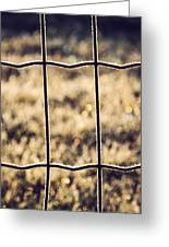 Frozen Fence Greeting Card by Wim Lanclus