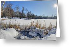 Frozen Pond Greeting Card by Patrick Jacquet