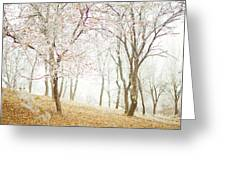 Frozen Spring Greeting Card by Silvia Floarea Toth