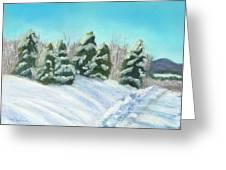 Frozen Sunshine Greeting Card by Arlene Crafton