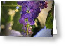 Fruit of the Vine Greeting Card by Donna Kennedy