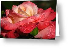 Full Bloom Greeting Card by Juergen Roth