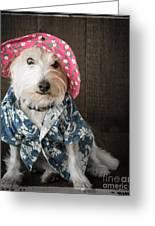 Funny Doggie Greeting Card by Edward Fielding