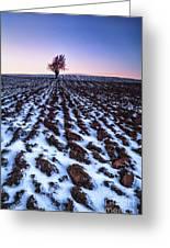 Furows In The Snow Greeting Card by John Farnan