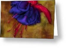 Fuschia Flower Greeting Card by Susan Candelario