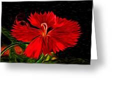 Galactic Dianthus Greeting Card by David Kehrli