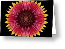 Galliardia Arizona Sun Flower Mandala Greeting Card by David J Bookbinder