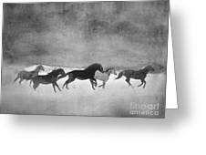 Galloping Herd Black And White Greeting Card by Renee Forth-Fukumoto