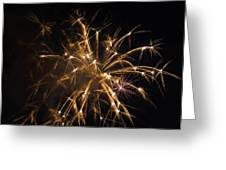 Galveston Fireworks Greeting Card by Jason Brow