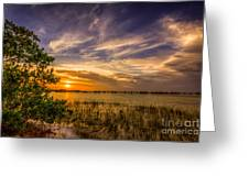 Gandy Lagoon Greeting Card by Marvin Spates