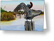 Gar Lake Pelican 2 Greeting Card by Phyllis Beiser