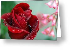 Garden Bouquet Greeting Card by Steven Milner