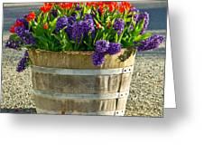 Garden In A Bucket Greeting Card by Eti Reid