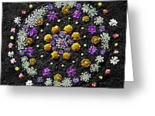 Garden Mandala 2009 V.2 Greeting Card by Joseph Duba