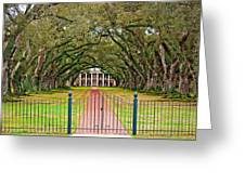 Gateway To The Old South Greeting Card by Steve Harrington