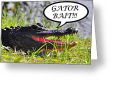 Gator Bait Greeting Card Greeting Card by Al Powell Photography USA