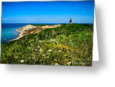Gay Head Light and Cliffs Greeting Card by Mark Miller