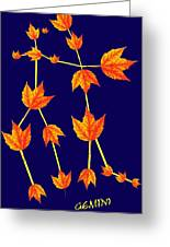 Gemini Constellation Composed By Maple Leaves Greeting Card by Paul Ge