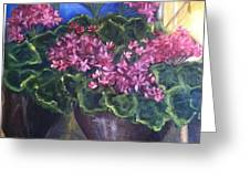 Geraniums Blooming Greeting Card by Sherry Harradence