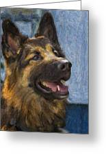 German Shepard Greeting Card by Bill Linhares