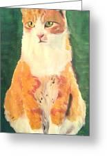 Ginger Greeting Card by John Morris